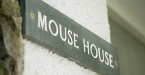 mouse-house
